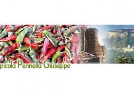 """Azienda Agricola """"Pennella"""""""